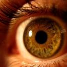 Uso de biometria como senha é uma das previsões da IBM (Foto: sxc.hu)