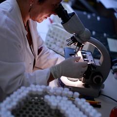 Laboratório microscópio (Foto: Getty Images)