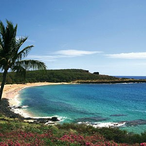 Ilha Lana'i, no Havai, comprada pelo bilionário CEO da Oracle, Larry Ellison  (Foto: Reprodução Internet)