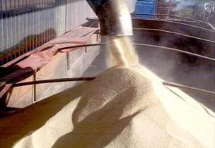 Carregamento de açúcar (Foto: Divulgação)