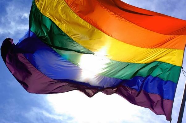 Bandeira GLBT (Foto: Reprodução)