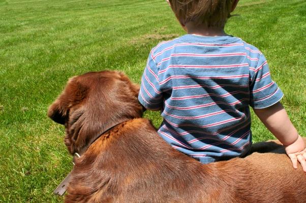 Bebê e cachorro (Foto: SXC)