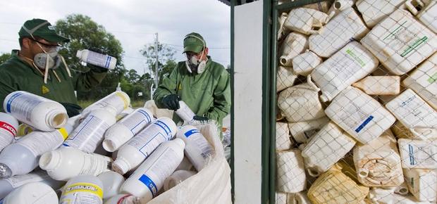 Descarte de embalagens de agrotóxicos (Foto: Arquivo/inpEV)
