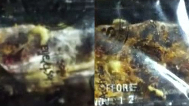 Victoria Cleven tirou fotos e filmou seu pacote de salgadinhos, que estava mais fresquinho do que ela esperava (Foto: Reprodução internet)