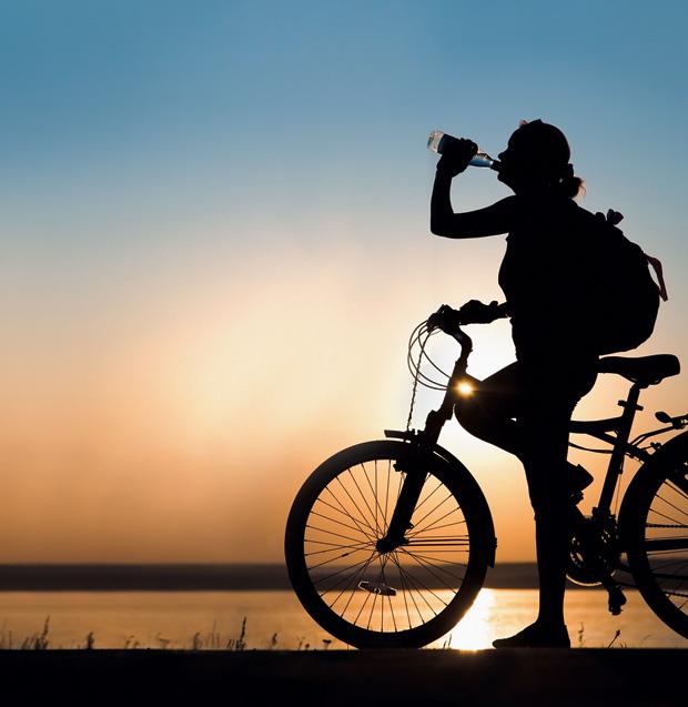 Bike (Foto: reprodução)
