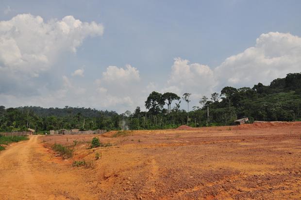 Avenida do ipê: por esta única rua do assentamento Areia é transportada a madeira roubada das áreas de preservação  (Foto: ÉPOCA)