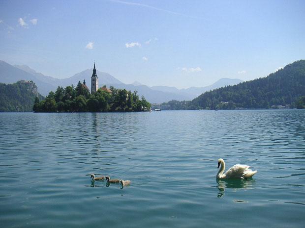 ilha_bled_eslovenia (Foto: divulgação)