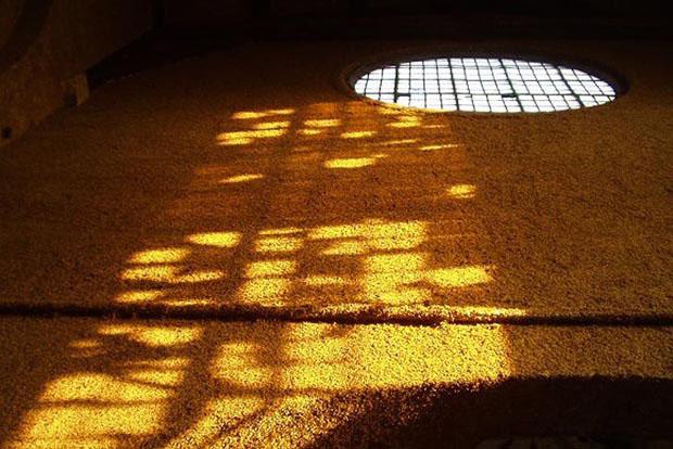 galeria_grama_londres (Foto: divulgação)