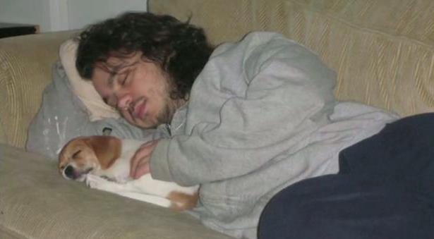 Cachorro (Foto: Internet / Reprodução)