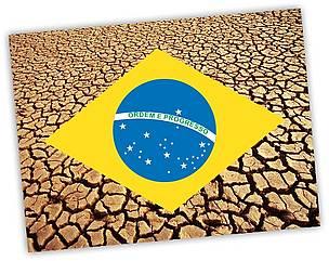 WWF (Foto: Divulgação/WWF)