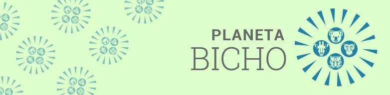 Planeta Bicho