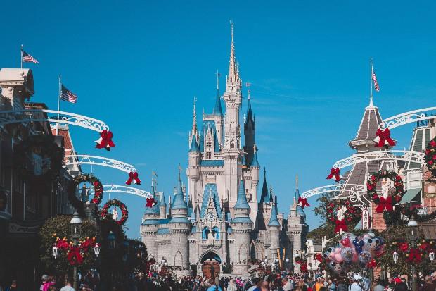 Walt Disney World paga US$ 30 por jacaré capturado no parque em Orlando (EUA)
